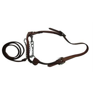 Halter Presentation Heifer Leather Brown W / Chain Medium