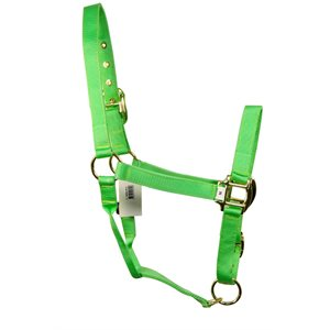 "1""Halter W / Snap Adj.Curb Bpdc Hdw Small Lime Green*Disc"