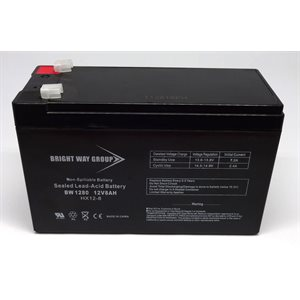 Batterie p /  electrificateur s250 / s500 / ps15